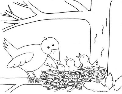 Bird spring pat coloring pages