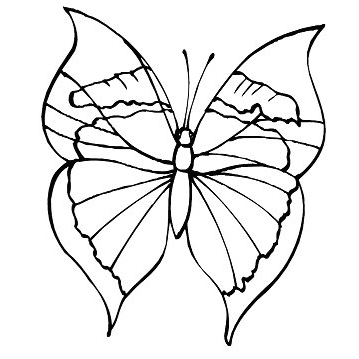 Disney Coloring Page Butterfly